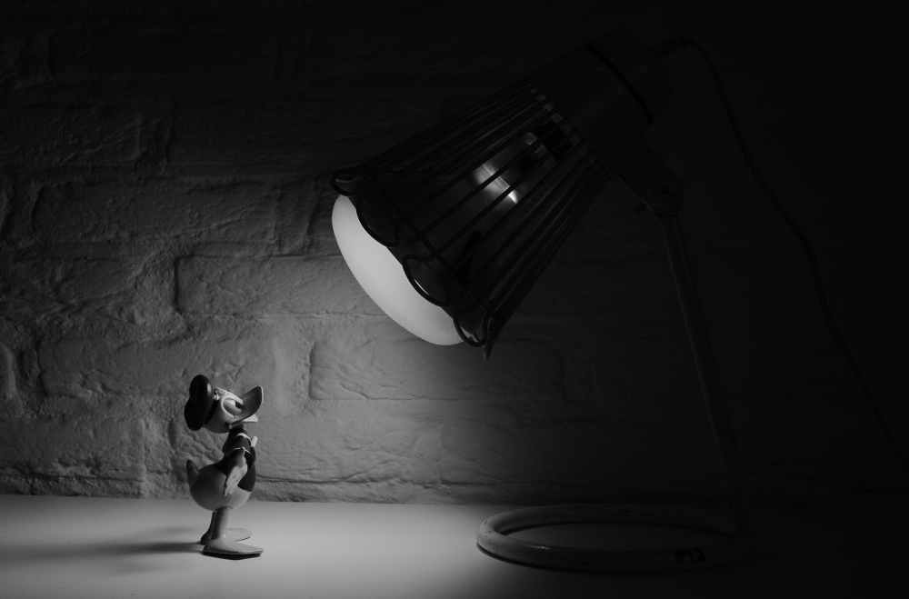 black and white cartoon donald duck spotlight